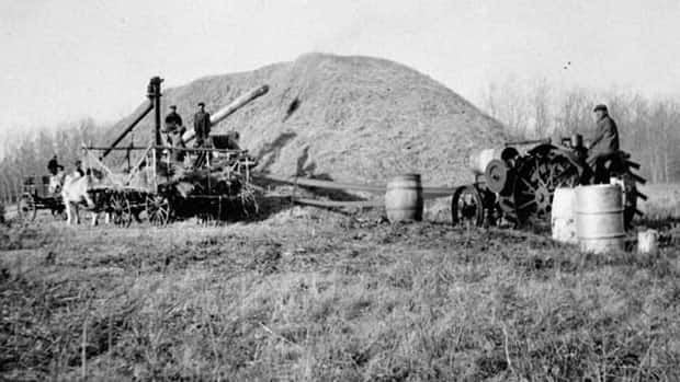 One of the Saskatchewan Jewish farm colonies was formed around Lipton. Shown here are farmers threshing wheat in 1925.