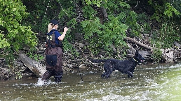 A police dog searches the banks of the Credit River in Hewick Meadows Park in Mississauga, Ont.