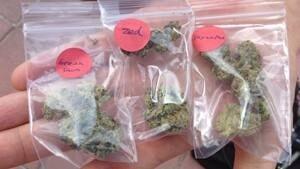 mi-ott-marijuana-300