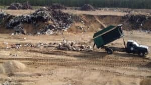 nl-caribou-dump-201308