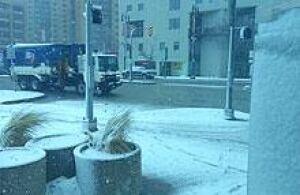 mi-snowy
