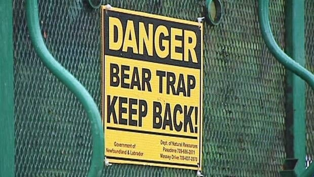 Residents of Glovertown are dealing with a bear problem in the area.