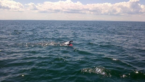 As Jill Leon made her way across the Northumberland Strait, the weather began to calm, making the swim easier.
