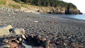 nl-300-middle-cove-beach-20130719