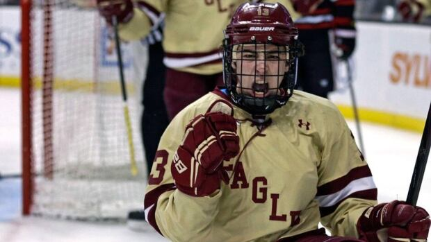 Boston College forward Johnny Gaudreau is a sophomore forward who led the Hockey East league in points and assists and was tied for second in the nation with six game-winning goals.