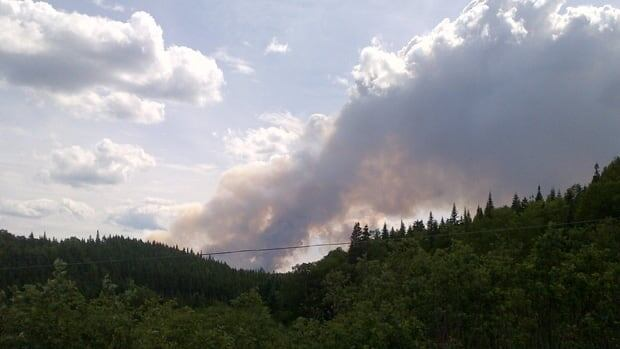 A fire burns on the west coast of Newfoundland. Chris Wilson/CBC