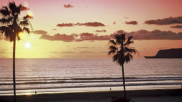 Palm trees grace the beach in San Diego, Calif. About seven per cent of Canadian snowbirds who spend six months out of the country stay in California, according to the Canadian Snowbird Association.