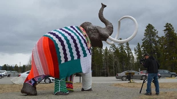 Members of Yarn Bomb Yukon stitched a wooly mammoth sculpture into a onesie at the Yukon Beringia Interpretive Centre in Whitehorse this week.