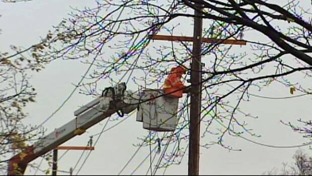 Sarnia Mayor Mike Bradley praised the work of the city's hydro workers.