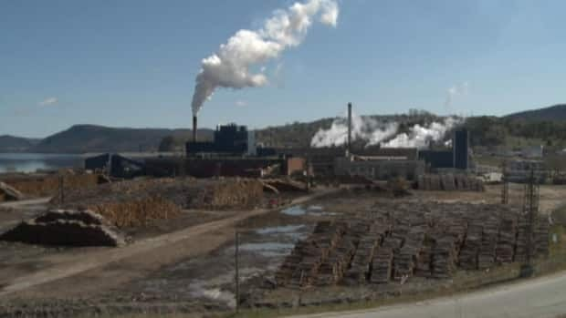 Kruger Inc. says it is reviewing the viability of Corner Brook Pulp and Paper, the only remaining newsprint mill in Newfoundland and Labrador. CBC