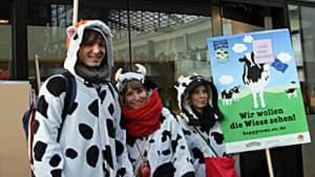 mi-300-cow-protesters