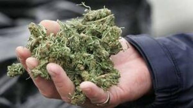 hi-bc-120426-marijuana-4col