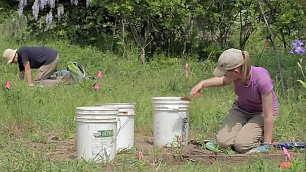 McMaster students dig through ancient dirt at Cootes Paradise.