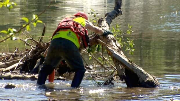 City crews started cleanup on the Elbow River today to clear debris from flooding in June.