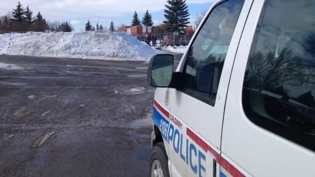 A student was stabbed in the stomach at a southwest Calgary high school Friday.