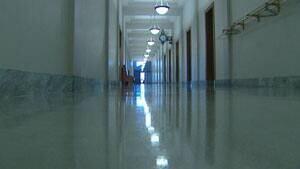 mi-legislature-shiny-floor