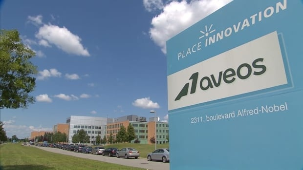 Aveos — the company that ran Air Canada's Montreal maintenance centre — went out of business in 2012, laying off more than 2,000 employees.