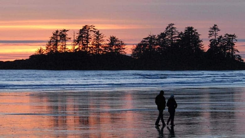 Tofino, On The West Coast Of Vancouver Island, Is Famous For Its Beaches-6373