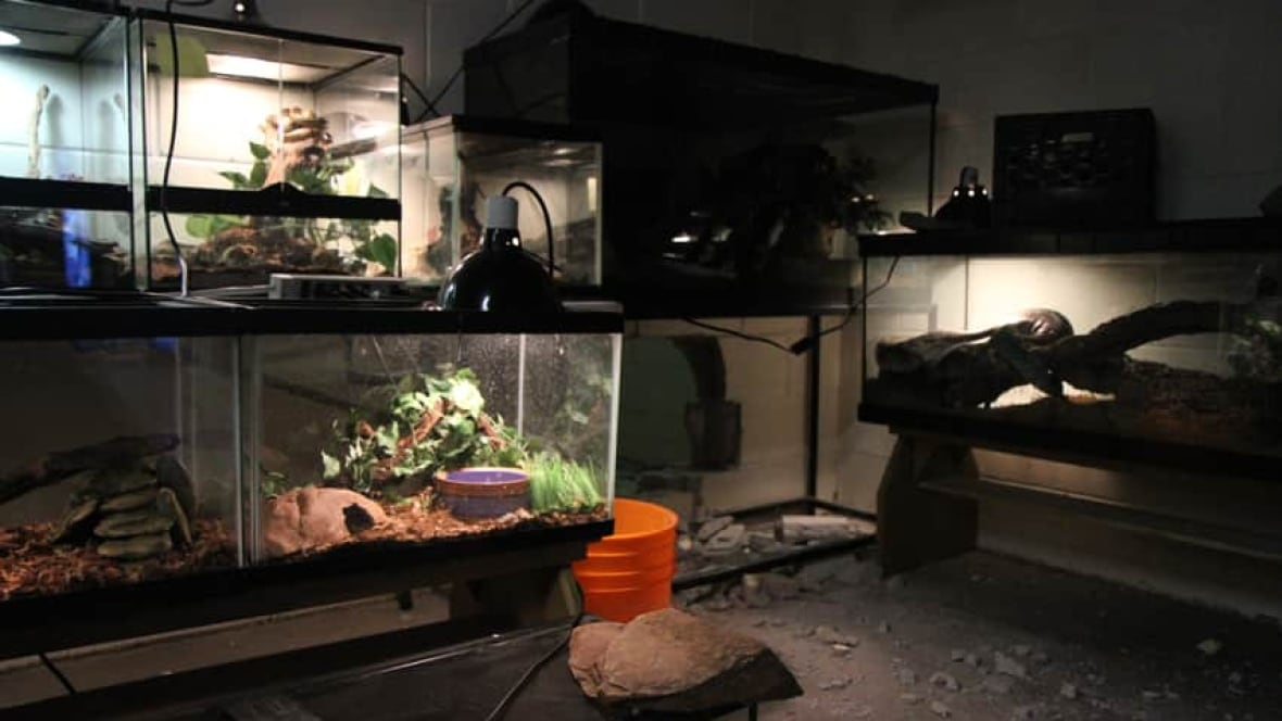 Reptile Store Kitchener
