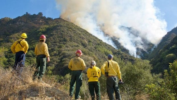 Firefighters and forest service employees watch a wildfire burn in the Painted Cave area of Santa Barbara, Calif., in October.