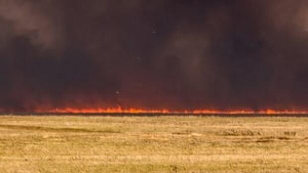 hi-852-grass-fire-03242282-4col