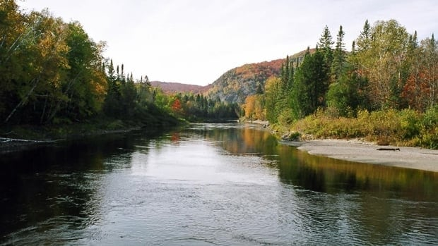 Environmental advocates say that without support for the wilderness values of provincial parks like Wabikimi, the management plan could change and possibly threaten the natural ecological conditions that exist there.