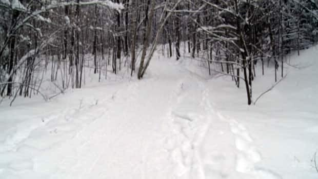 Twice this winter showshoers have become lost in Gatineau Park.