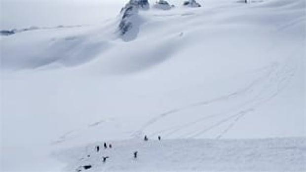 mi-bc-130319-whistler-blackcomb-backcountry-avalanche