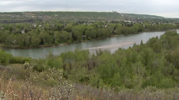 Bowmont Park Natural Area in northwest Calgary is being overhauled by the city.