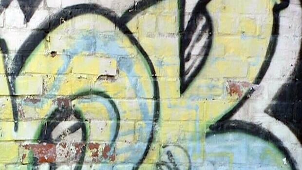 Saint John's city council is waiting on a report looking at other ways to curb graffiti.