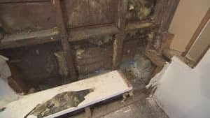 mi-bc-130221-home-inspection-sill-rot