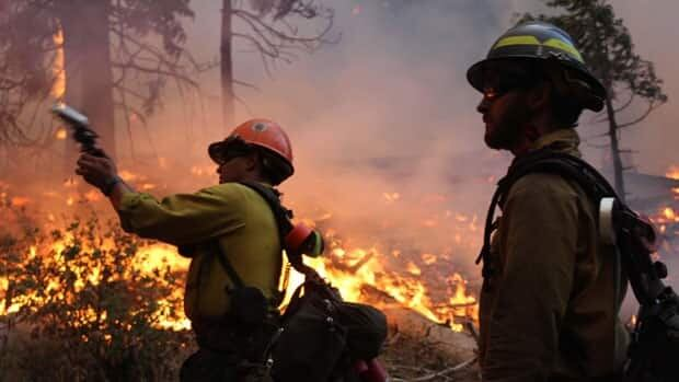 The Rim Fire began on Aug. 17 in an isolated area of the Stanislaus National Forest and has burned nearly 960 square kilometres — one of the largest wildfires in California history.