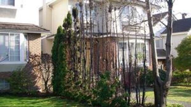 hi-bc-130226-fireworks-damage-shrubs-vancouver-2012-4col
