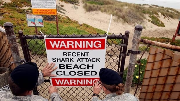 There were a total of 75 shark attacks worldwide in 2011, including 29 in the U.S. At Surf Beach, northwest of Los Angeles, warning signs were put up after a surfer was attacked.