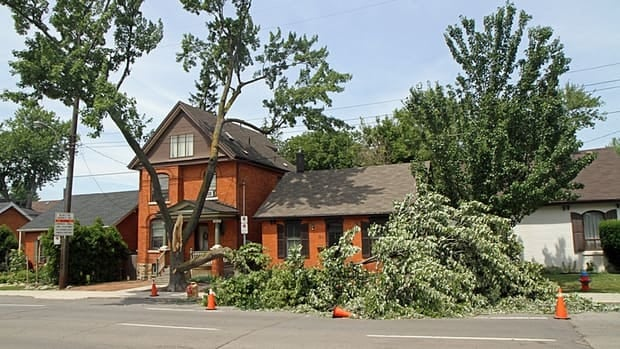 Last week's storm tore down branches and toppled trees in Hamilton. The city has temporarily lifted household garbage collection limits to help residents with the cleanup.