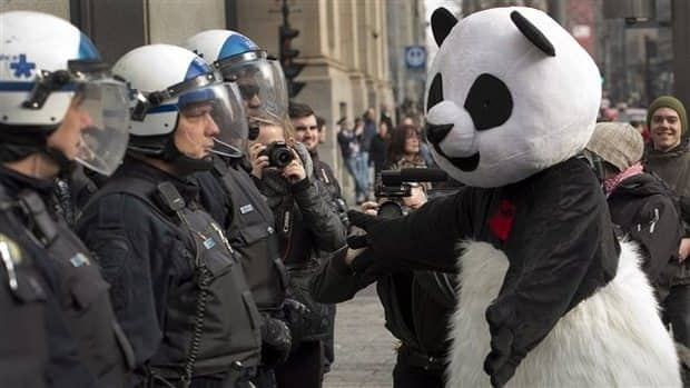 The man disguised as Anarchopanda also received two fines during Friday night's protest.