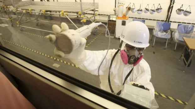 A worker carries out radiation screening last year on a bus for a media tour at the Fukushima Daiichi nuclear power plant. The plant's operator had previously denied contaminated water reached the sea, despite spikes in radiation levels in underground and sea water samples taken at the plant.