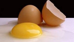 hi-wdr-egg-yolks