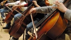 si-cello-cp1205155-300