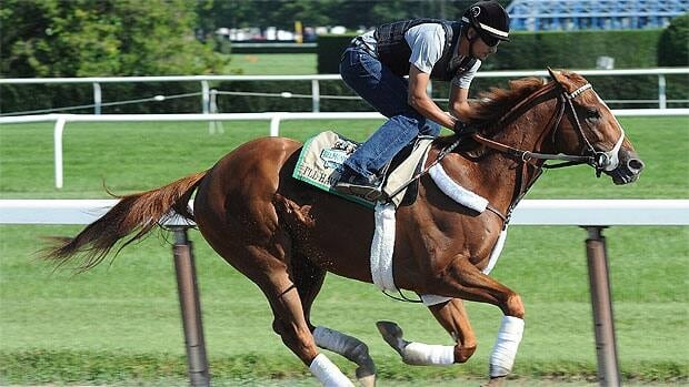 Kentucky Derby and Preakness Stakes winner I'll Have Another, ridden by exercise rider Jonny Garcia, gallops at Belmont Park.