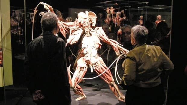 Science North has offered special exhibits like Bodyworlds to help generate more tourism dollars.