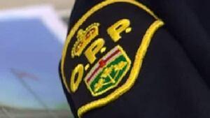 hi-opp-logo
