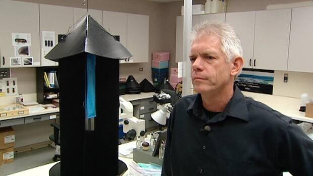 Jon Sweeny says the spraying won't harm the environment.