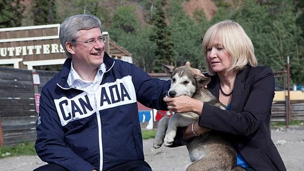 Prime Minister Stephen Harper and his wife Laureen play with a husky dog during a tour of Caribou Crossing, Yukon on Monday.