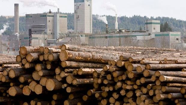 The Louisiana-Pacific announcement can be seen as an indication of confidence in the future of the B.C. forest industry itself, said Doug Routledge, spokesman for the Council of Forest Industries.