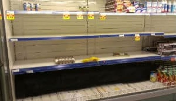 nl-egg-shelves-20130109