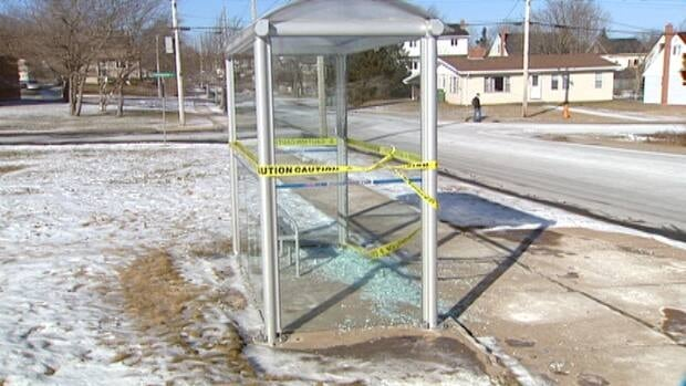 Metro Transit says 18 bus shelters have been smashed in Clayton Park since the weekend.