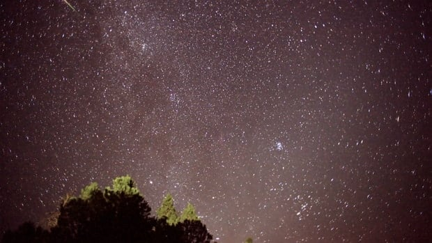 Star gazer Don Hladiuk says the Perseid meteor showers have started already, but the peak period is Aug. 11-13.
