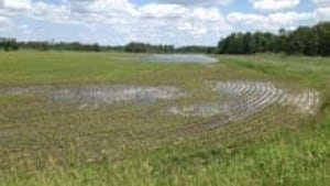 si-ott-floodingcrops-220