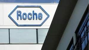 inside-roche-3314398